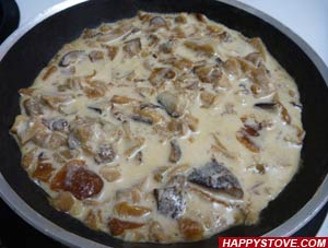 Porcini Mushrooms and Cream Sauce