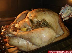 Roast Stuffed Turkey