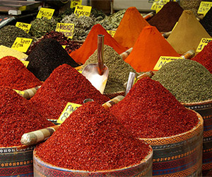 Spices English Italian Dictionary - By happystove.com